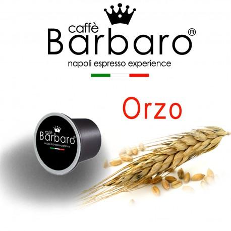Orzo NE